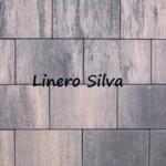 Linero-silva.jpg_1216690857